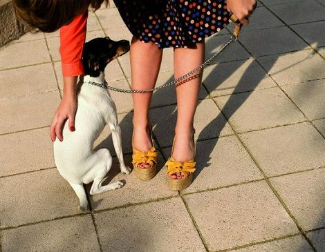 castaner primavera verano 2012 cunas lazo