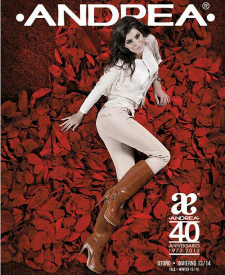 0b3cf5c7 Colección de zapatos Andrea otoño invierno 2013 2014 – Catálogos de Moda